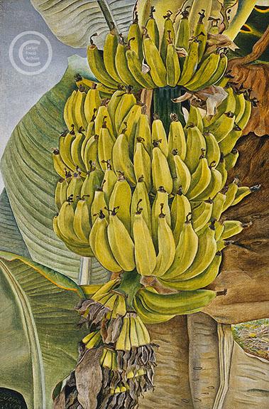 lucian-freud--bananas--1953-oil-on-canvas-23cmx15cm