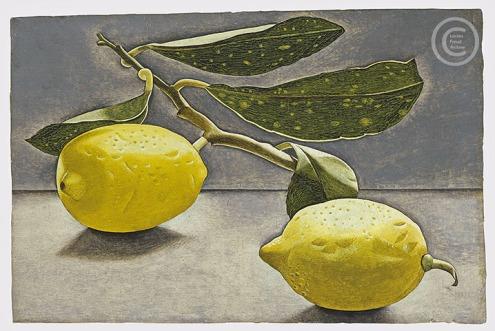 lucian-freud--lemon-sprig--1947-oil-on-board-115cmx18cm