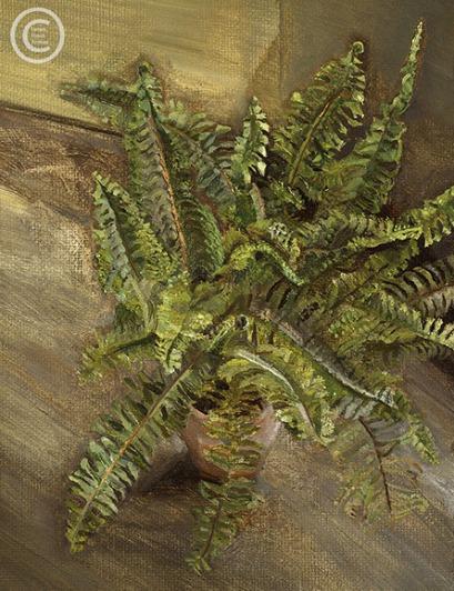 lucian-freud--small-fern--1967-oil-on-canvas-393cmx29