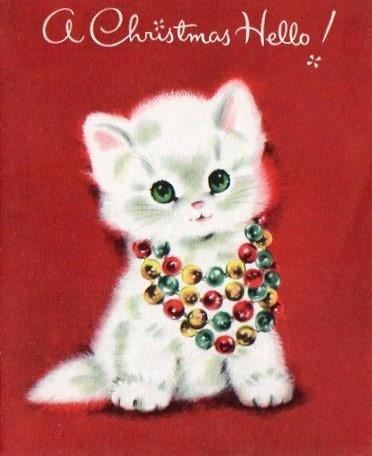 gatinho de coleira festiva